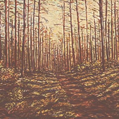 Wittenberg Path